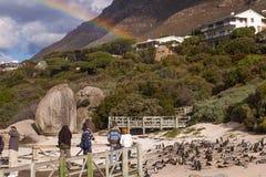 södra africa strandstenblock Arkivfoto