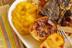 Södra - afrikan - lagat mat mål Fotografering för Bildbyråer