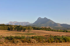 Södra - afrikansk natur Royaltyfria Bilder