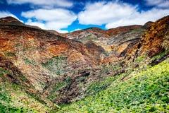 Södra - afrikanska berg Arkivfoton