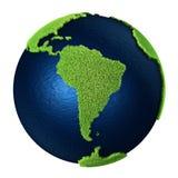 södra Amerika jordgräs Arkivbilder