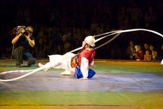södra corean dansare Royaltyfri Bild