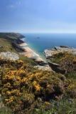 Södra Devon Coastline England arkivbild