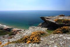 Södra Devon Coastline England royaltyfri fotografi