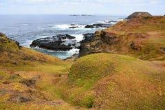 Södra havkustlinjelandskap på Phillip Island, Victoria Arkivfoto