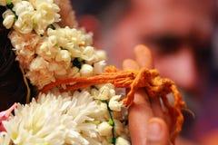 södra indisk brud, Thaali, Mangalyam, brudgum, traditionell förbindelseceremoni royaltyfri foto