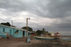 Södra Jamaica lopp Arkivbilder