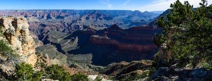 Södra kant av Grandet Canyon i Arizona Royaltyfria Foton