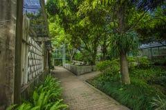 Södra Kinabotanisk trädgård Royaltyfri Bild