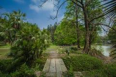 Södra Kinabotanisk trädgård Royaltyfri Foto