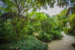 Södra Kinabotanisk trädgård Arkivbilder