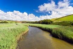 Södra Milton Ley Nature Reserve Devon Arkivbilder