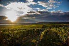 Södra Moravia Royaltyfri Foto