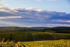 Södra Moravia Mikulov område Royaltyfri Fotografi