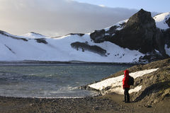 Södra Shetland öar - Antarktis Arkivbilder