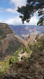 södra storslagen kant för kanjon Arkivbild