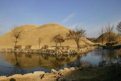 södra tumuli för gyeongjukorea park Arkivfoton