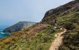 Södra västkustenbana nära Tintagel Cornwall arkivfoton