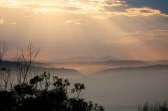 södra vildmark för africa liggande Arkivbilder