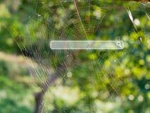 Sök stången på spindelrengöringsduken, online-digitalt marknadsföringsbegrepp arkivfoton