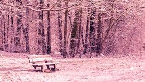 Sömlös ögla - snöa på en bänk i en skog, vinterplats lager videofilmer