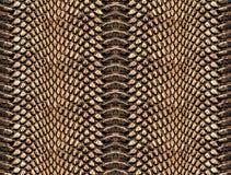 Sömlös abstrakt modell på en hudtextur, orm arkivbilder