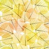 Sömlös bakgrund - Autumn Leaves Pattern Arkivbild