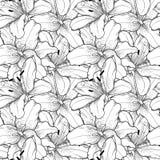 Sömlös bakgrund av hand-drog svartvita liljor Royaltyfria Foton