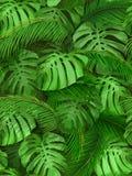 Sömlös bakgrund av tropiska sidor Arkivfoto