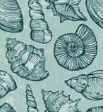 Sömlös bakgrund för havsskal Arkivfoton