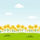 Sömlös bakgrund för landskap Trädgårds- seamless bakgrund Trädgårds- bakgrund för solros Blommalandskapbakgrund LAN för klar dag Arkivbild