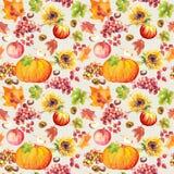 Sömlös bakgrund för tacksägelse Frukter grönsaker - pumpa, höstsidor vattenfärg Royaltyfria Bilder