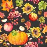 Sömlös bakgrund för tacksägelse Frukter grönsaker - pumpa, höstsidor vattenfärg Fotografering för Bildbyråer