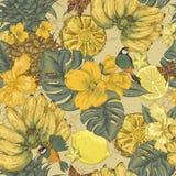Sömlös bakgrund för tappning, tropisk frukt Royaltyfri Bild