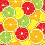 Sömlös bakgrund för vektor av citronen, apelsin, limefrukt, grapefruktskivor Fotografering för Bildbyråer