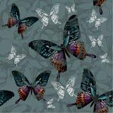 Sömlös bakgrund med blommor och färgrika fjärilar, hand Arkivbilder