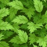 Sömlös bakgrund med gröna sidor. Arkivfoto