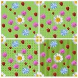 Sömlös bakgrundsuppsättning för grön sommar av 4 varianter Royaltyfri Bild