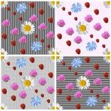 Sömlös bakgrundsuppsättning för sommar av 4 varianter Royaltyfria Bilder