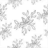 Sömlös blom- bakgrund Arkivfoton