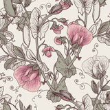 Sömlös blom- bakgrund med blommande ärtor Royaltyfria Bilder