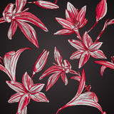 Sömlös blom- bakgrund med hand drog blommor. Vektor EPS10 Arkivbilder