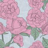 Sömlös blom- bakgrund med hand drog rosa rosor. VektorEP Arkivbild