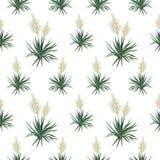 Sömlös blom- bakgrund, palmliljablommor Royaltyfri Fotografi