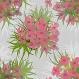 Sömlös blom- modell Arkivfoto