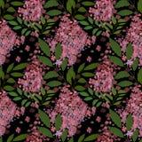 Sömlös blom- modell Royaltyfria Foton