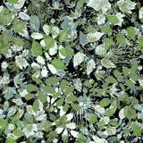 Sömlös blom- modell Arkivbilder