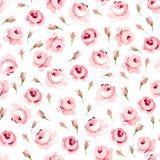 Sömlös blom- modell med stora och små rosa rosor Royaltyfri Foto