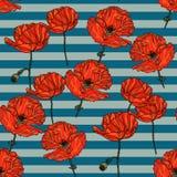 Sömlös blom- modell med vallmoblommor Vektor Illustrationer