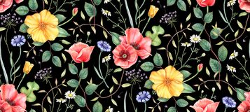 Sömlös blom- modell med vildblommor på svart bakgrund Hand dragen vattenfärgillustration royaltyfri illustrationer